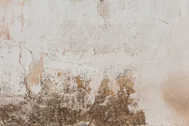 Damaged Stucco Wall